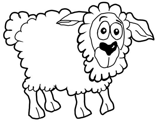 Finished drawing of cartoon sheep / lamb