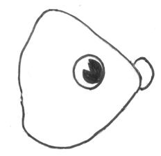 Step 4 How to Draw a Cartoon Fish Step by Step Drawing Tutorial for Kids