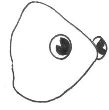Step 5 How to Draw a Cartoon Fish Step by Step Drawing Tutorial for Kids