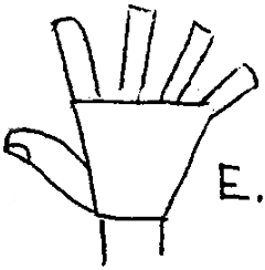 Drawing the Back of the Hand with the Hand Outstretched