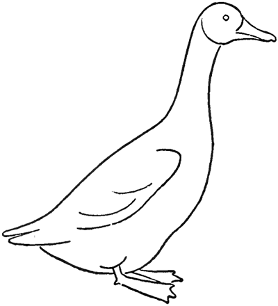 Drawing A Goose How To Draw Geese Step By Step Tutorial