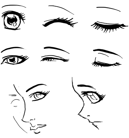 When drawing female girl eyes in anime