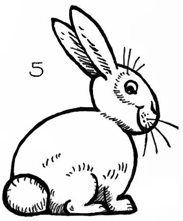 How To Draw Bunnies With Easy Bunny Rabbits Drawing Lesson How To