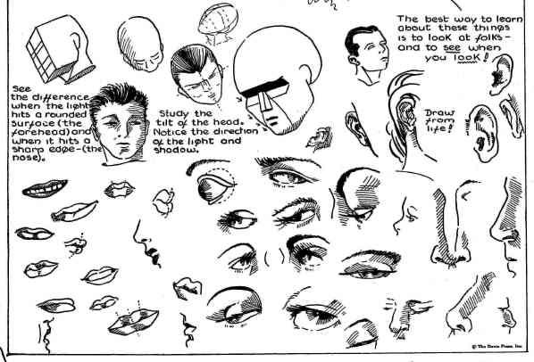 how to draw cartoons eyes. How to Draw Cartoon Heads