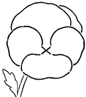 آموزش نقاشی گل بنفشه