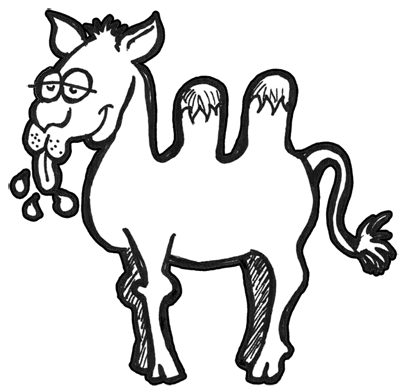 How to Draw Cartoon Camels with Easy Step by Step Drawing