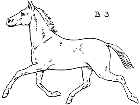 How To Draw Horses With Easy Step By Step Drawing Lessons Page 2 Of 2 How To Draw Step By Step Drawing Tutorials