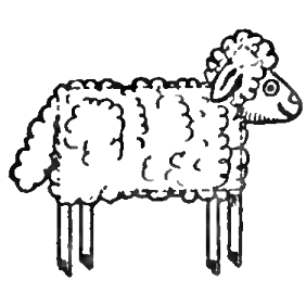 how to draw sheep lambs with easy drawing lesson for preschoolers - Drawing For Preschoolers