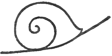 How to draw snails with simple step by step drawing for How do you draw a snail
