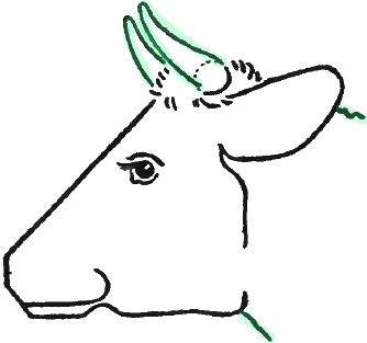 how to make a cow head