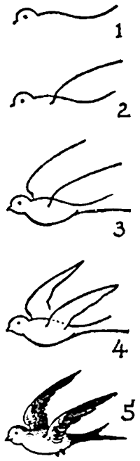 Simple sparrow drawings - photo#18