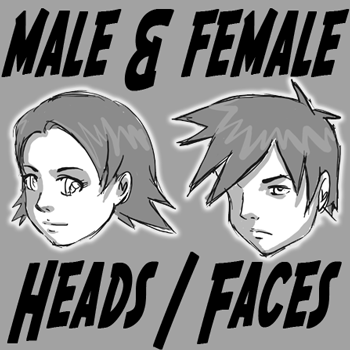 Difference Between Drawing Male And Female Anime Manga Heads