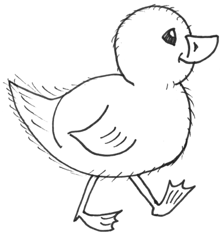 How to Draw Chicks : Drawing Cartoon Baby Chicks in Easy ...